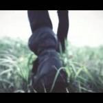 ONE OK ROCK のThe Beginning は初心者の方が楽しくコピーするのに最適!!